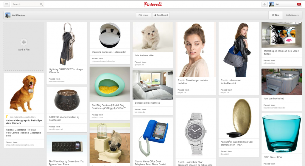Screenshot of Pinterest Wishlist Board